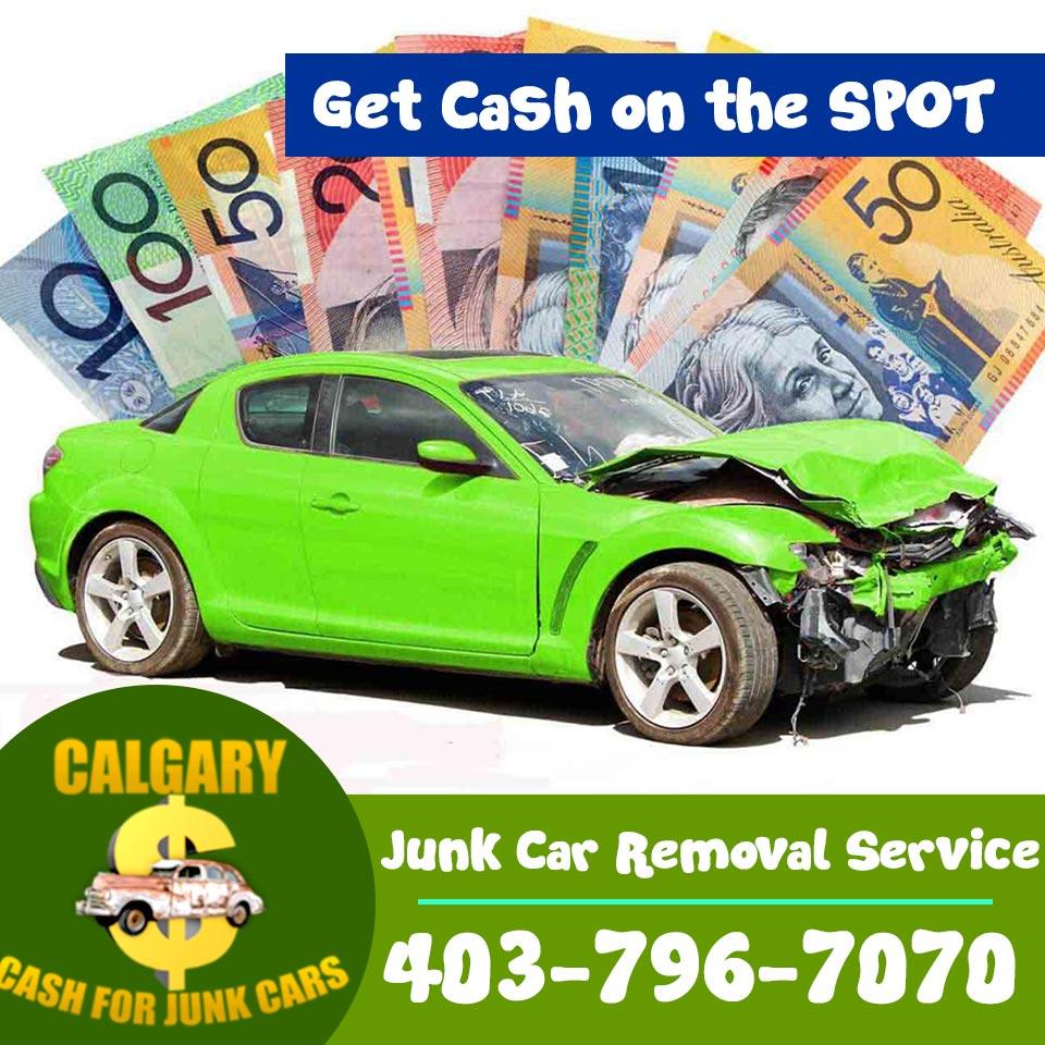 A Junk car in your backyard